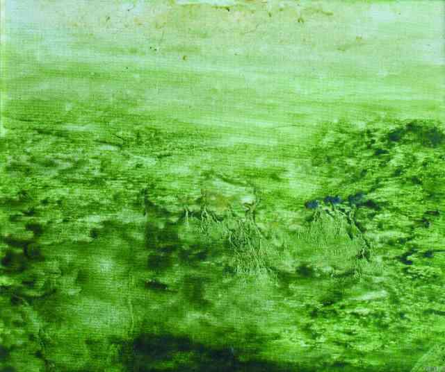 green.jpg-for-web-LARGE